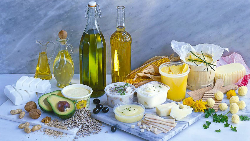 Роль жиров в обмене веществ