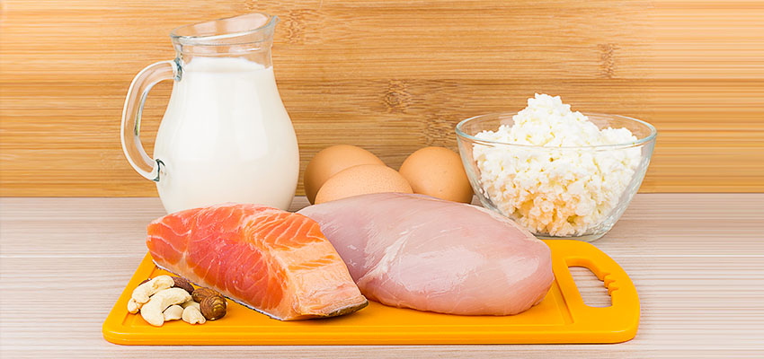 The best sources of protein:
