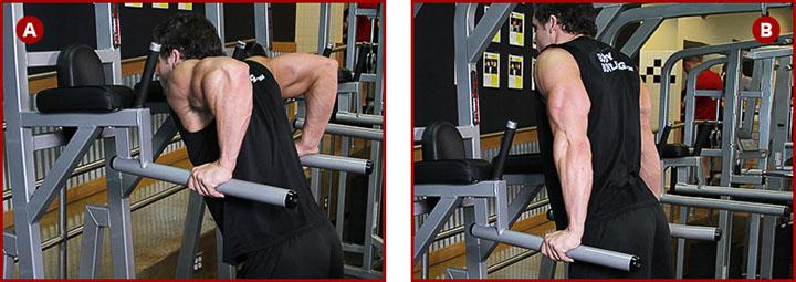 Техника выполнения упражнения отжимания на брусьях