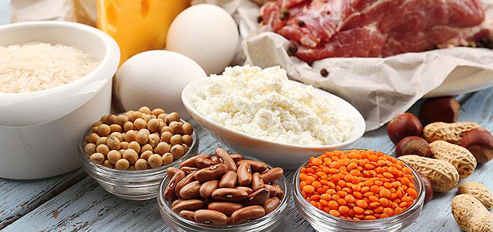 в каких продуктах содержится большое количество протеина