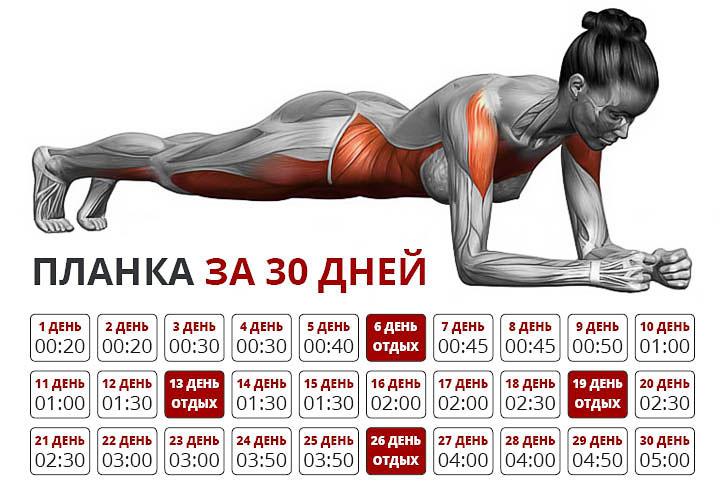 планка упражнение фото схема на месяц точечных светильников