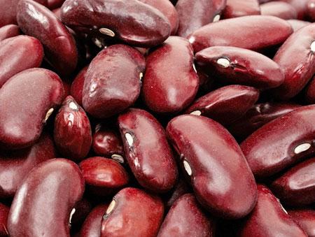 фасоль источник белка