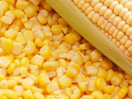 кукуруза как источник белка